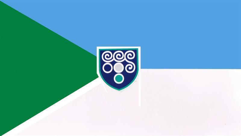 School Flag - final version.JPG